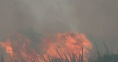 Kebakaran Lahan di Ogan Ilir Meluas